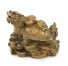 Testoasa-dragon cu pui